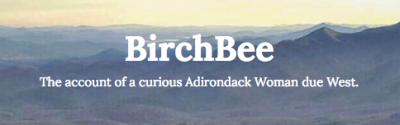 BirchBee